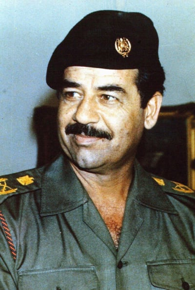 Saddam Hussein's Novels - © Attention Deficit Disorder Prosthetic Memory Program