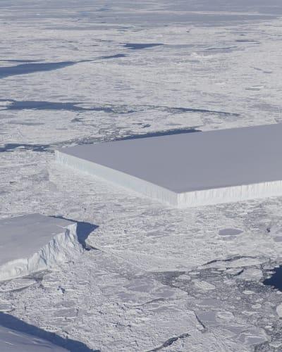 Tabular Iceberg - © Attention Deficit Disorder Prosthetic Memory Program