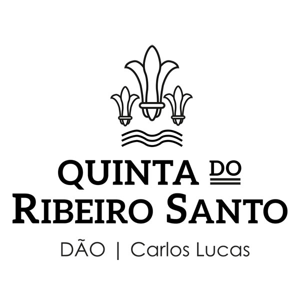 Ribeiro Santo