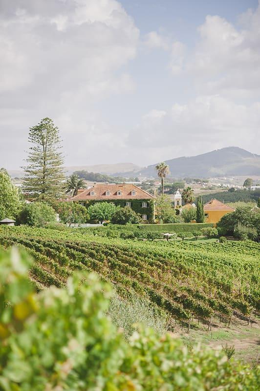 Quinta de Sant