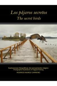 Los pajaros secretos