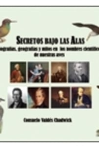 SECRETOS BAJO LAS ALAS.
