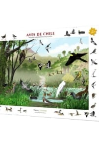 Rompecabezas / Identificación aves de Chile