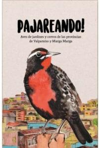 Pajareando! Aves De Jardines Y Cerros De Las Provincias De Valparaíso Y Marga Marga