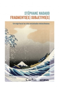 Fragmento(S) subjetivo(S)