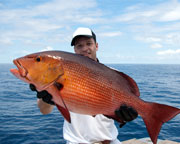 Deep Sea Fishing Charter Miami - up to 6 people, 6 Hours
