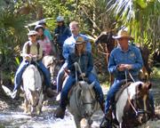 Horseback Riding Orlando, Trail Adventure - 1 Hour 30 Minutes