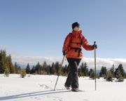 Segway Tour Big Bear Lake - 2 Hours