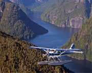 Misty Fjords Seaplane Tour, Ketchikan - 1 1/2 Hour Flight