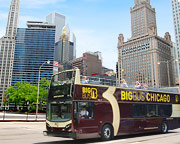Bus Tour Chicago, the Big Loop - Day Pass