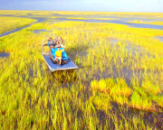 Private Everglades Airboat Tour, Fort Lauderdale - 60 Minutes