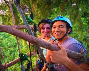 Canopy Tree Climbing, Seattle - Half Day