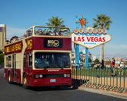 Open-Top Bus Tour Las Vegas - Day Pass
