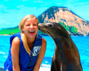 Sea Lion Swim Hawaii with Admission to Sea Life Park - 30 Minute Swim
