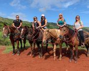 Horseback Riding Maui - 1 Hour 30 Minutes