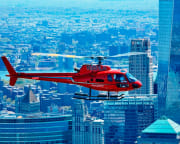 Private Helicopter Tour of New York City, Up To 5 Passengers - 30 Minute Flight