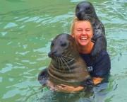 Seal Swim Miami with Admission to Seaquarium - 15 Minute Swim