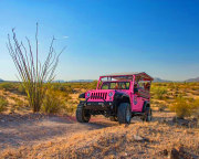 Jeep Tour Sedona, Diamondback Gulch Tour - 2.5 Hours
