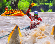 Whitewater Rafting Jackson Hole, Snake River - 3 Hour Classic Raft