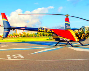Private Downtown St. Petersburg Helicopter Tour - 10 Minutes