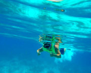 Reef Snorkel Key West - 3 Hours (MORNING EARLY BIRD SPECIAL)