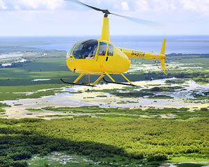 Helicopter Ride New Orleans, City and Swamp Tour - 30 Minutes