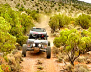 Off-Road RZR Drive Mojave Desert, Road Runner Adventure Las Vegas - 2 Hours with Passenger
