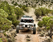 Off-Road RZR Drive Mojave Desert Adventure from Las Vegas - 3 Hours