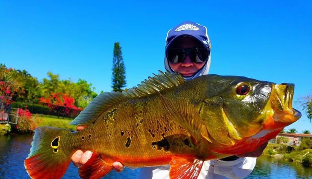 Fishing_Tour_Miami_Airport_Lakes__6_Hours