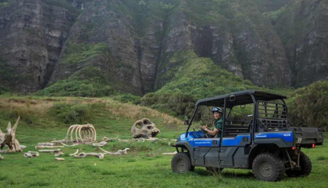UTV Guided Tour Oahu, Kualoa Ranch - 1 Hour (Book Up to 5 People Per Vehicle!) - 19a260fcaade6f9 , UTV-Guided-Tour-Oahu-Kualoa-Ranch-1-Hour-Book-Up-to-5-People-Per-Vehicle-13645223 , UTV Guided Tour Oahu, Kualoa Ranch - 1 Hour (Book Up to 5 People Per Vehicle!) , Array , 13645223 , Arts & Entertainment > Party & Celebration > Gift Giv