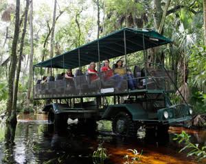 Trail Buggy Safari, Orlando - 2 Hours