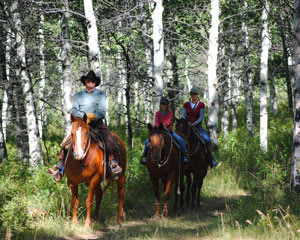 Horseback Riding Park City , Private Mountain Trails - 3 Hours
