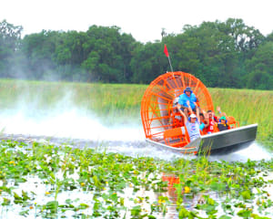 Airboat Swamp Tour, Orlando - 1 Hour