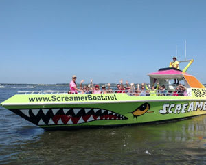 Speed Boat Ride and Dolphin Watch Ocean City - 50 Minutes