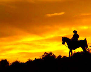 Wild West Horseback Riding Las Vegas - Sunset Dinner Ride