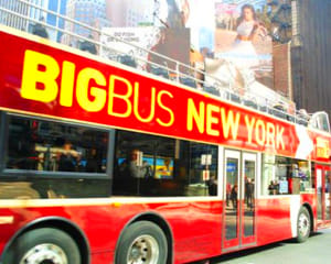 Bus Tour New York City, Downtown and Uptown - Day Pass
