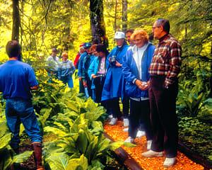 Walking Tour Ketchikan, Rainforest Island Adventure - 4 Hours