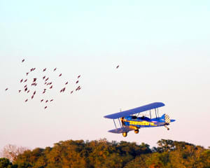 Smoky Mountain Biplane Ride, Intro Flight - 8 Minutes