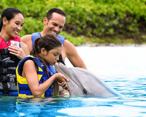 Dolphin Encounter Hawaii with Admission to Sea Life Park - 30 Minute Swim