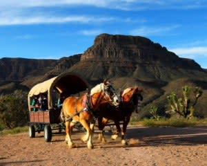 Helicopter Tour Grand Canyon West Rim with Wagon Ride