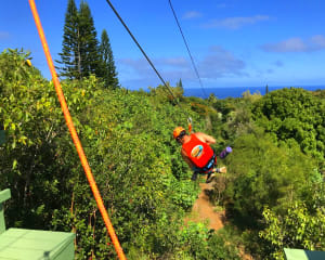 Zipline Maui, 8 Lines - 2.5 Hours