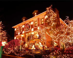 bus tour new york city dyker heights christmas lights 35 hours