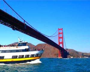 San Francisco Bay Cruise - 1 Hour