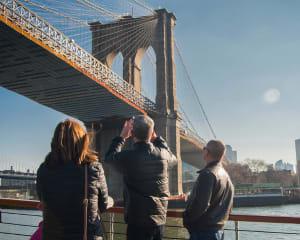Statue of Liberty & NYC Skyline Cruise - 1.5 Hours
