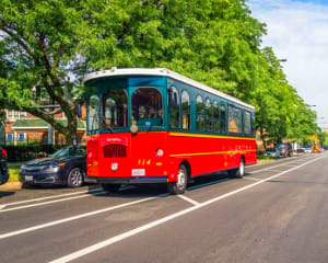 Chicago Trolley Tour, Two Day Hop-On-Hop-Off Tour