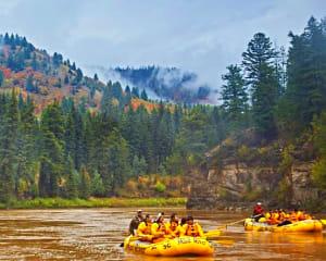 Scenic Float Jackson Hole, Snake River - 3 Hours