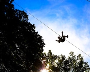 Zipline Treetop Adventure Chicago, Western Springs - 2 Hours 30 Minutes