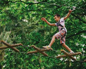 Zipline Treetop Adventure Detroit, Washington Township - 2 Hours 30 Minutes