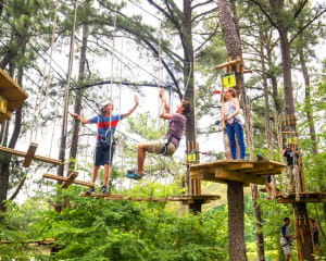 Zipline Treetop Adventure, Kansas City - 2 Hours 30 Minutes