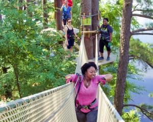 Zipline Treetop Adventure, Pittsburgh, Allison Park - 2 Hours 30 Minutes